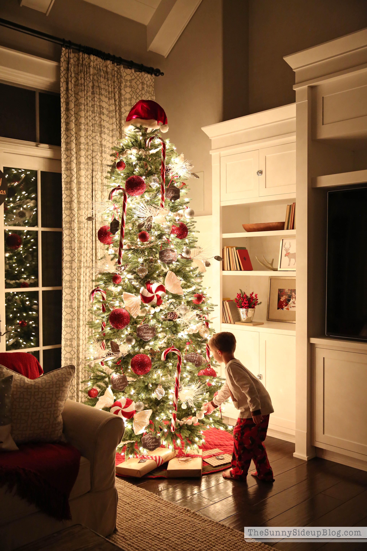Red And White Candy Cane Christmas Tree Novocom Top